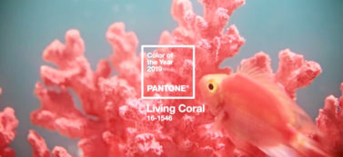 2019年のトレンドカラーはサンゴのような「Living Coral」が来る!